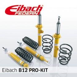 EIBACH B12 PRO-KIT...
